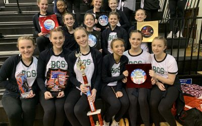 Our Award Winning Bears